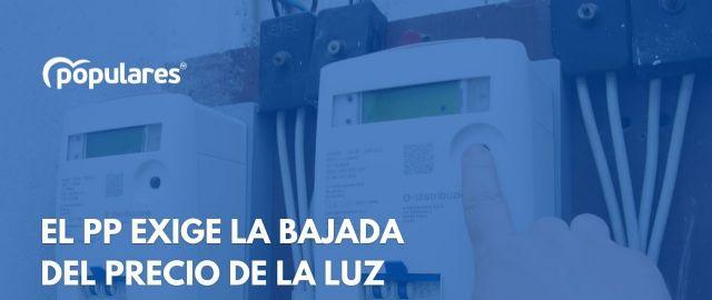 El PP de Las Torres de Cotillas pide al Pleno municipal unanimidad política para exigir al Gobierno de España una bajada inminente de la factura de la luz - 1, Foto 1