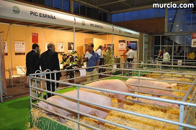 La carne de cerdo, un producto libre de antibióticos que cumple con los controles de seguridad alimentaria más exigentes - 1, Foto 1