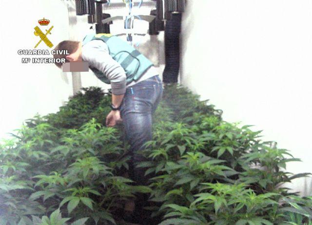 La Guardia Civil desmantela en Librilla un invernadero clandestino tipo indoor con medio centenar de platas de marihuana