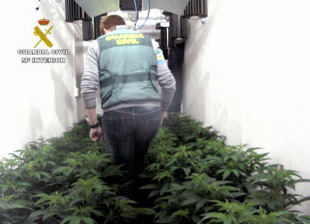 La Guardia Civil desmantela en Librilla un invernadero clandestino tipo indoor con medio centenar de platas de marihuana, Foto 2
