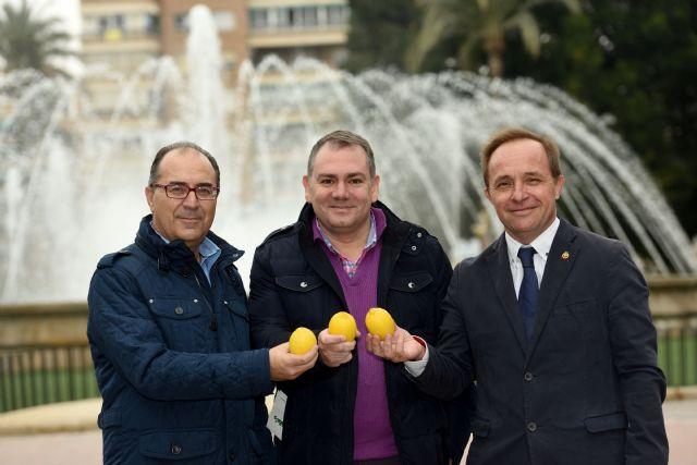Los ingenieros agrícolas y agrónomos se unen en la promoción del limón de España - 1, Foto 1