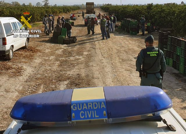 La Guardia Civil investiga a una decena de personas relacionadas con delitos contra el derecho de los trabajadores - 4, Foto 4