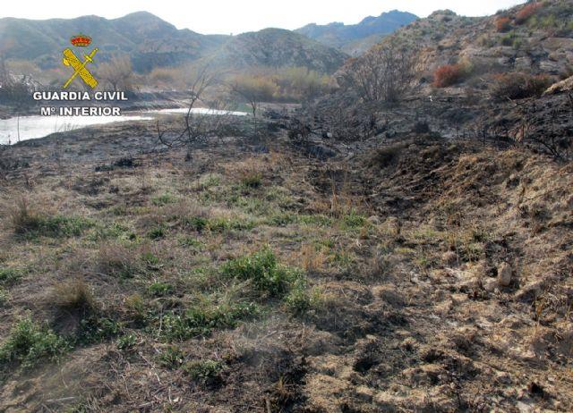 La Guardia Civil investiga a dos personas por un incendio en Moratalla y Hellín - 5, Foto 5