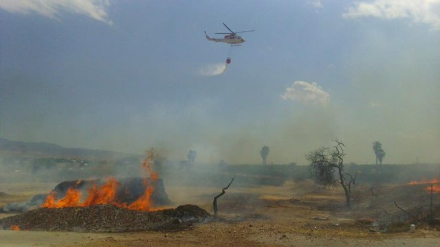 A fire destroys part of a farm, a ship pallet and a swamp on a farm located in front of the camping Totana, Foto 2