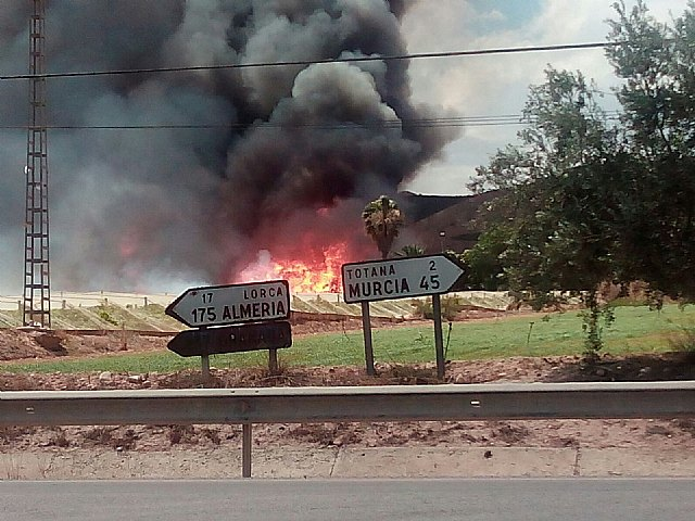 A fire destroys part of a farm, a ship pallet and a swamp on a farm located in front of the camping Totana, Foto 3