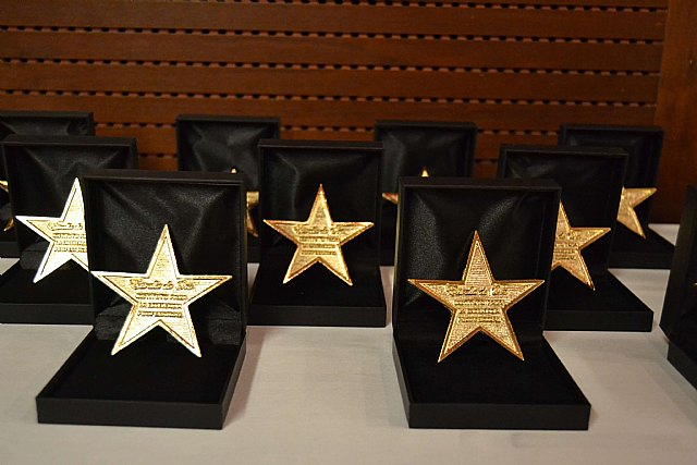 Angélica Galera, recoge la Estrella de Oro a la Excelencia Profesional, Foto 3