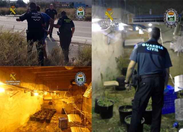 Desmantelada una plantación de marihuana tipo indoor en Fortuna - 2, Foto 2
