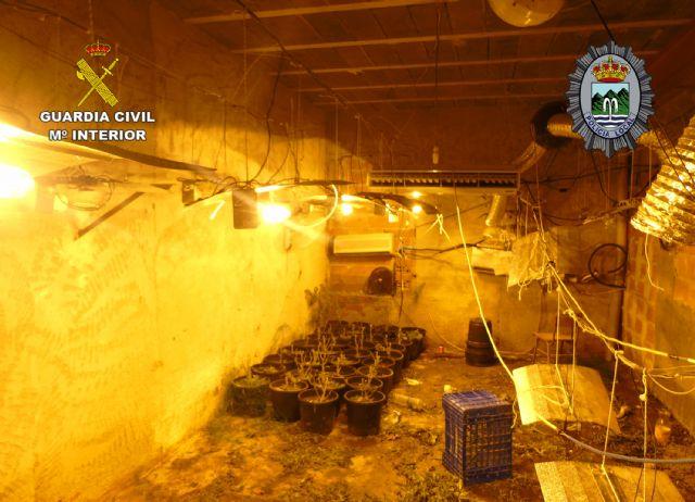 Desmantelada una plantación de marihuana tipo indoor en Fortuna - 3, Foto 3