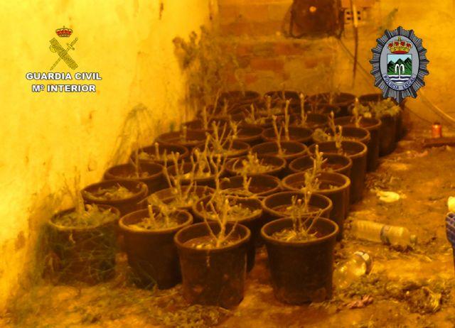 Desmantelada una plantación de marihuana tipo indoor en Fortuna - 4, Foto 4