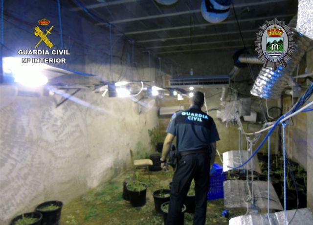 Desmantelada una plantación de marihuana tipo indoor en Fortuna - 5, Foto 5