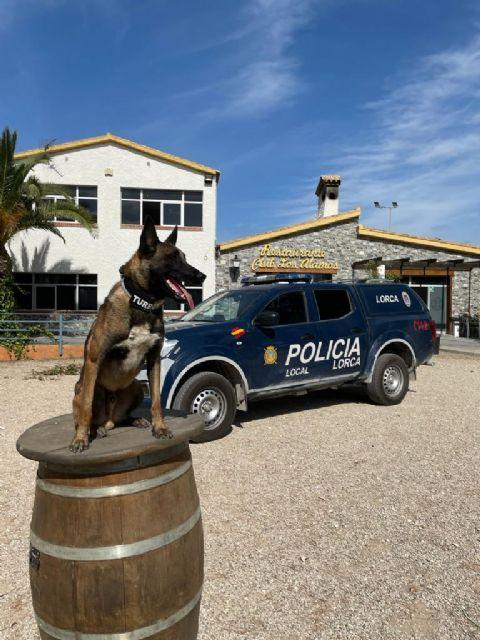 La Unidad Canina de la Policía Local de Lorca muestra su trabajo a más de 200 niños de la Escuela de Verano del Club Deportivo 'Los Álamos' - 1, Foto 1
