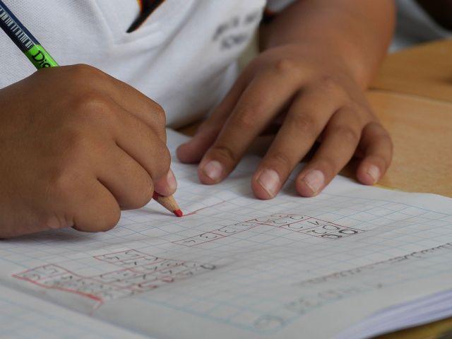 Unión de Uniones considera que los grupos burbuja escolares no sirven para el medio rural - 2, Foto 2