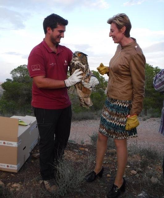 El Centro de Recuperación de Fauna Silvestre atiende a 68 búhos reales