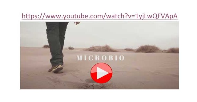 MICROBIO presenta SERLO TODO - 1, Foto 1