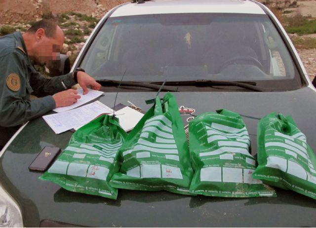 La Guardia Civil investiga a un vecino de Fortuna por la muerte violenta de cuatro galgos - 3, Foto 3
