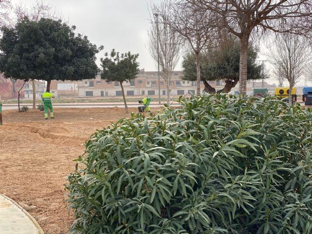 Labores de acondicionamiento en la Plaza Antonio Ferrandis de Roldán - 1, Foto 1