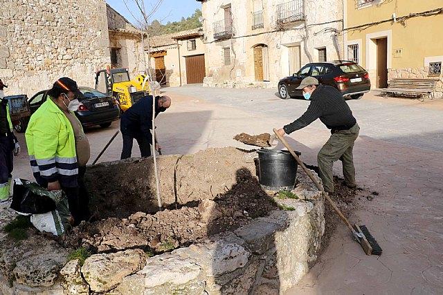 El Ayuntamiento de Pareja planta un nuevo olmo, resistente a la grafiosis, en Cereceda - 1, Foto 1