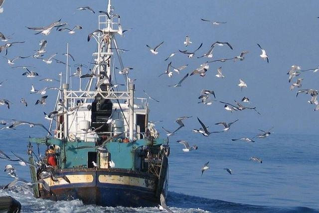 Ministerio de Agricultura y Pesca, Alimentación y Medio Ambiente, Foto 1