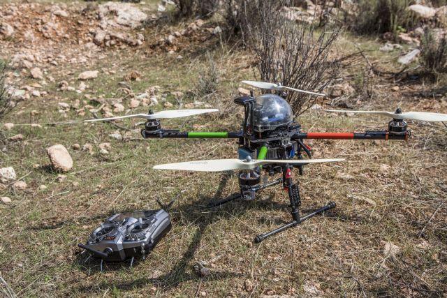 El control de la procesionaria del pino incluye por primera vez el uso de drones
