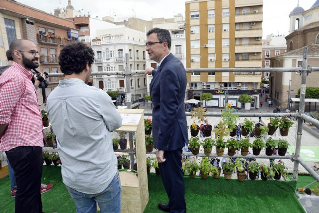 Un jardín vertical participativo decora la Plaza de Europa, que será rediseñada por los vecinos del barrio de Santa Eulalia - 2, Foto 2