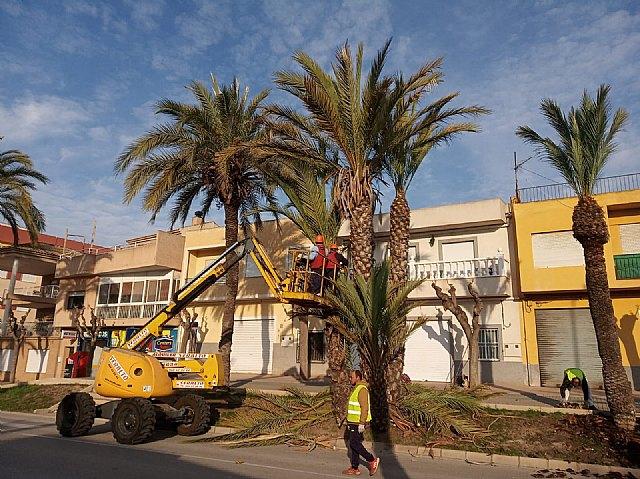 [Brigada municipal: trabajos del 19 de abril