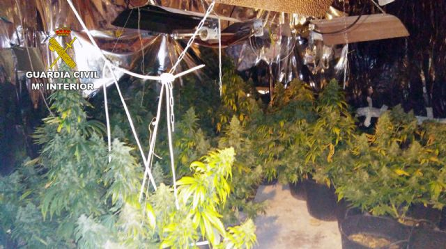 La Guardia Civil desmantela en Pliego una plantación indoor de marihuana - 3, Foto 3