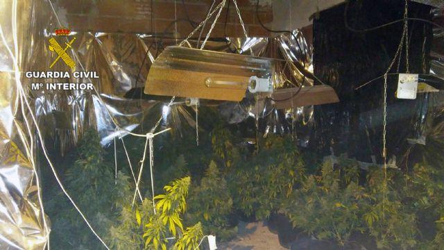 La Guardia Civil desmantela en Pliego una plantación indoor de marihuana - 4, Foto 4