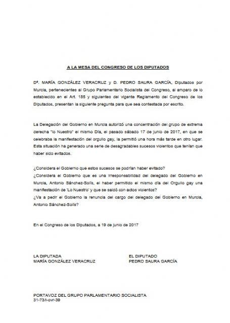 El PSOE considera una irresponsabilidad del delegado del Gobierno permitir la manifestación de un grupo de ultraderecha el día del Orgullo Gay - 1, Foto 1