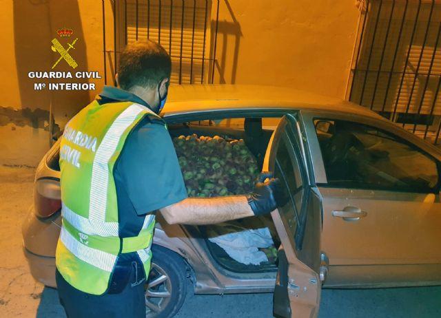 La Guardia Civil recupera más de media tonelada de melocotones en Cieza - 4, Foto 4