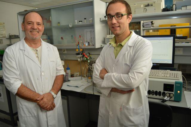 Un doctor de la UPCT, premio nacional a la mejor tesis doctoral de Electroquímica - 2, Foto 2