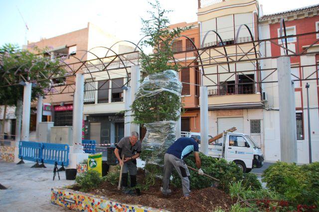Dos cedros nuevos para el Jardín de los Patos y La Cubana, Foto 2