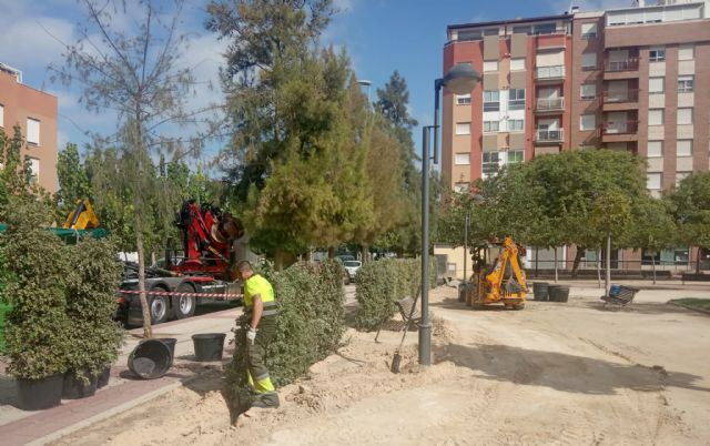 Más de 240.000 nuevas plantas arbustivas para crear perímetros verdes en los parques y jardines del municipio - 1, Foto 1