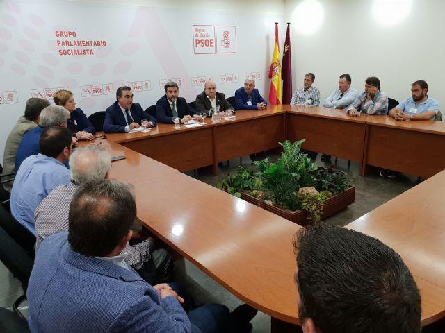 Vía libre con el respaldo mayoritario de la Asamblea a la propuesta del PSOE para que el melocotón de Cieza consiga el indicador IGP - 2, Foto 2