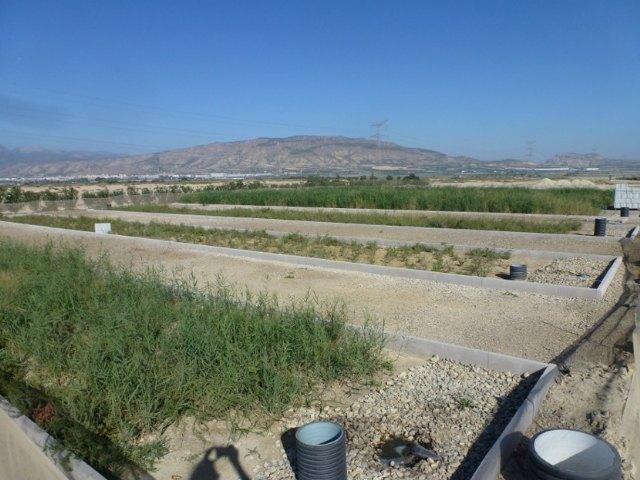 Cefusa y la UPCT avanza en el tratamiento de purines convirtiéndolos en fertilizante y agua para riego, Foto 2