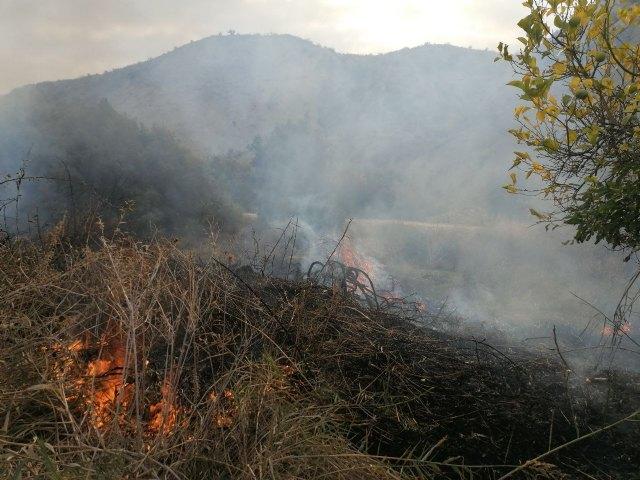 Conato de incendio en una rambla junto al casco urbano de Albudeite - 1, Foto 1
