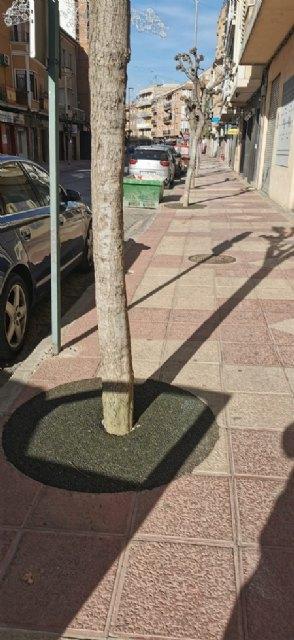 El Ayuntamiento mejora la seguridad de los vecinos con el arreglo de alcorques - 1, Foto 1