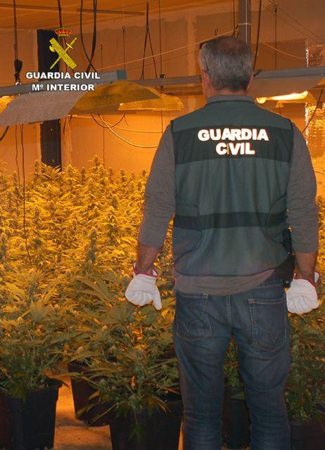 La Guardia Civil desmantela un invernadero clandestino de marihuana en Fortuna - 2, Foto 2