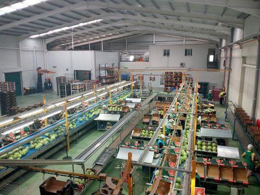 El Partido Popular de Puerto Lumbreras llevará a pleno una moción de apoyo al sector agroalimentario - 1, Foto 1