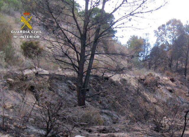 La Guardia Civil esclarece un incendio forestal ocurrido en Ojós con la investigación de un agricultor - 2, Foto 2