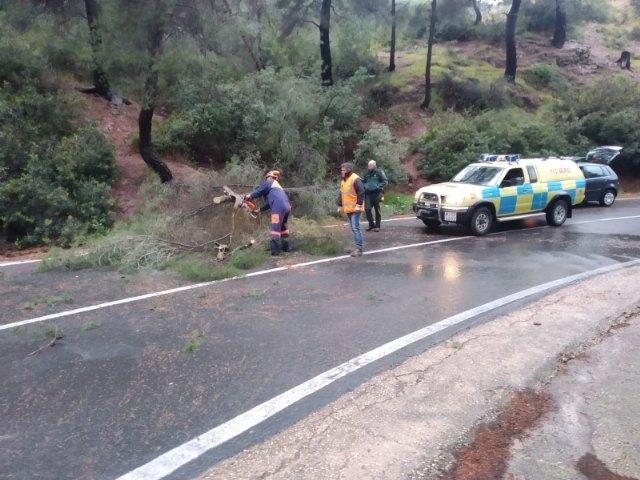 Protecci�n Civil atiende seis incidencias importantes durante el episodio de lluvias, Foto 1