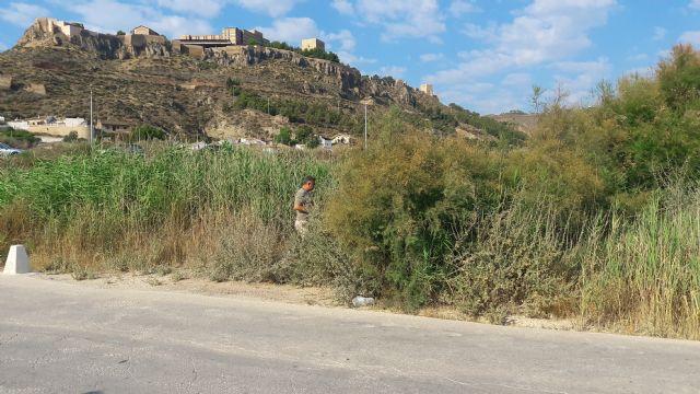 El PP alerta sobre el estado de las ramblas en Lorca; no se ha limpiado ninguna en los últimos dos años y la situación en caso de lluvia fuerte sería de grave riesgo - 1, Foto 1