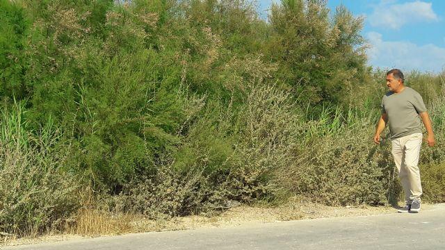 El PP alerta sobre el estado de las ramblas en Lorca; no se ha limpiado ninguna en los últimos dos años y la situación en caso de lluvia fuerte sería de grave riesgo - 2, Foto 2