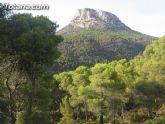 El 80 por ciento  de los murcianos considera Sierra Espuña la zona forestal m�s valiosa de la Regi�n