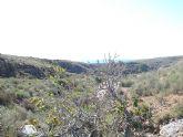 El Club Senderista de Totana sobre la Sierra de las Moreras - 23
