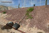"""Plantan 30 árboles autóctonos en la Ciudad Deportiva """"Sierra Espuña"""" para celebrar el 30 aniversario de la Constitución Española - 2"""