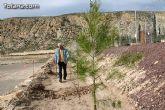 """Plantan 30 árboles autóctonos en la Ciudad Deportiva """"Sierra Espuña"""" para celebrar el 30 aniversario de la Constitución Española - 24"""