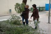 El Ayuntamiento repartir� gratuitamente ramas de pino para elaborar los �rboles de navidad