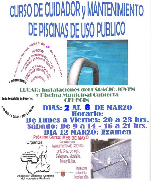Ceheg n curso de cuidado y mantenimiento de piscinas de for Curso mantenimiento piscinas