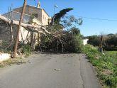 La Dirección General de Emergencias de la Región de Murcia activa el nivel de alerta amarillo por vientos