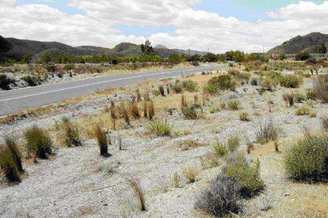 Comienza el acondicionamiento de la carretera que une Mazarrón con la pedanía lorquina de Morata, Foto 1